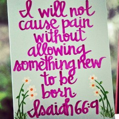 Isaiah 66:9 is a beautiful promise from God